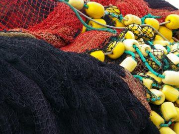 EOS - atelier à Martigues sur les usages de la mer